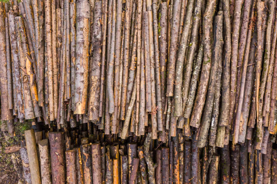 Holz gestapelt im Schuttmattli Goldau