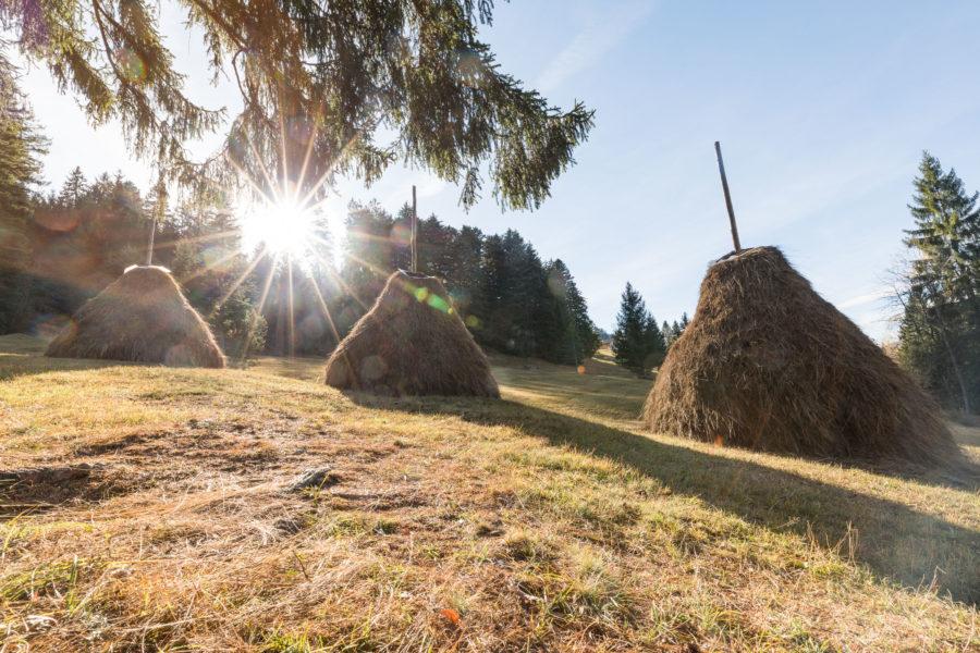 Tristen im Mostelberg mit Sonneneintrahlung